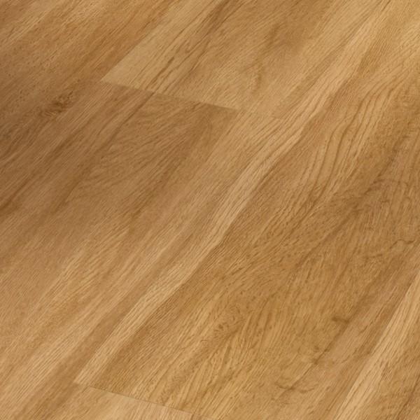 PARADOR Vinylboden Eiche Sierra natur Landhausdiele 4-seitige Fase | Basic 5.3