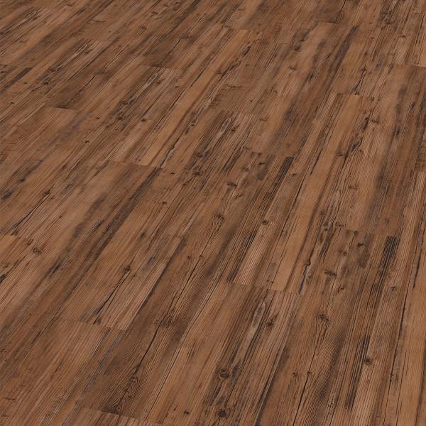TER HÜRNE Vinylboden Pinie no. 506 linear strukturiert matt Landhausdiele | base.59