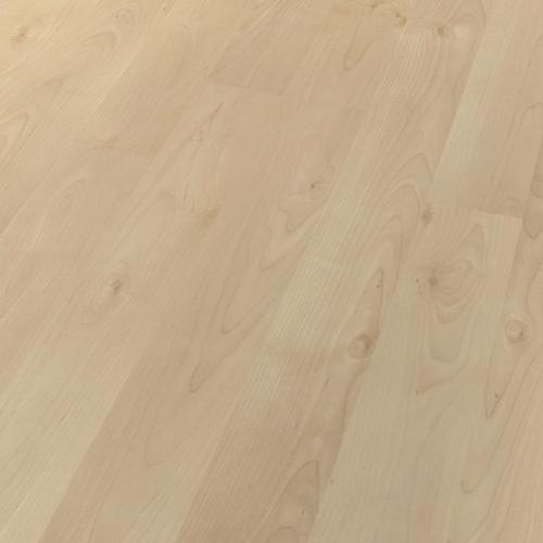 laminat ahorn crema matt 2 stab haro. Black Bedroom Furniture Sets. Home Design Ideas